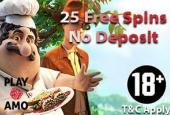 25 playamo freespins after registration